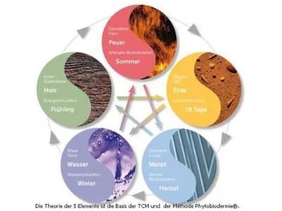 Phyto5 elemente theorie